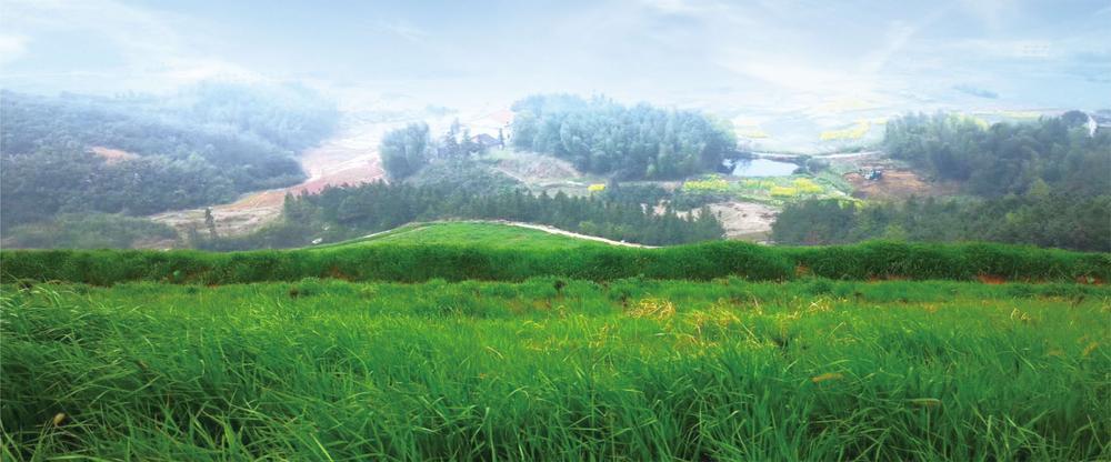 13湖南娄星区原磺矿重金属污染区土壤污染风险管控工程项目2.jpg