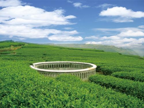 贵州都匀市2019年生态循环农业示范项目